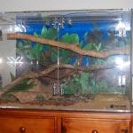 Acrylic Snake Enclosure